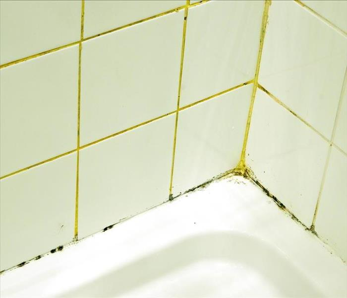 Moisture & Mold in an Ooltewah Bathroom