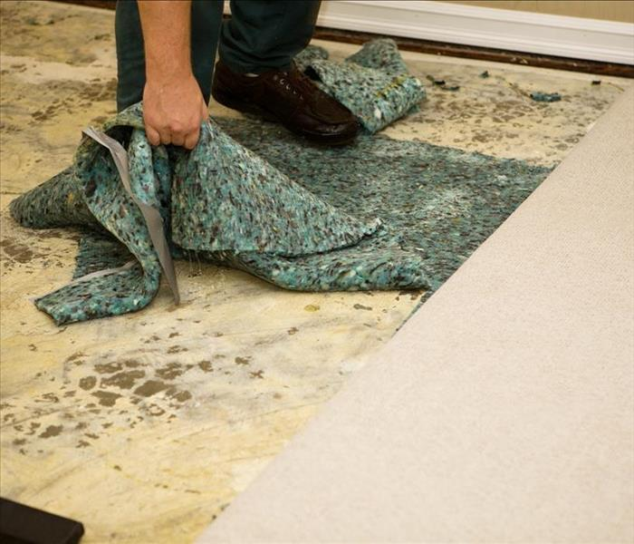 Water Damage Water Removal From Your Den In Ooltewah