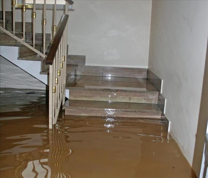 Water Damage Water Removal Experts Protect Homes and People's Health