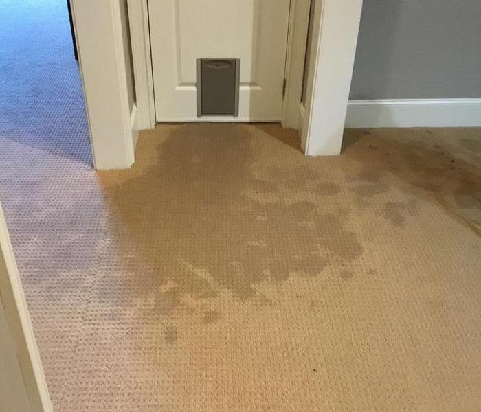 Water Damage Water Damage Tips: 8 Things to Do Before Help Arrives