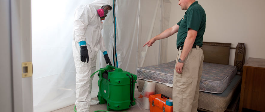 Chattanooga, TN mold removal process